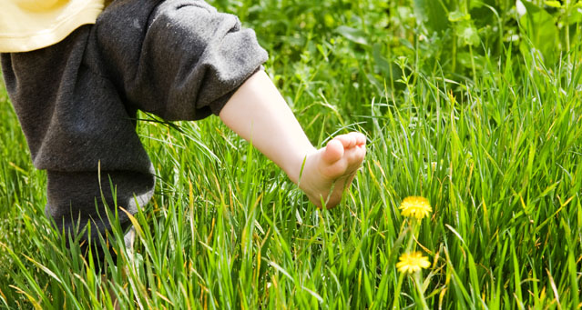 feet in grass_639x341